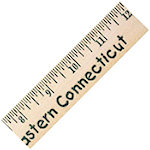 12 Inch English Scale Rulers